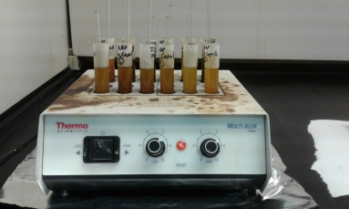 Organic materials are removed by cooking samples in Hydrochloric acid